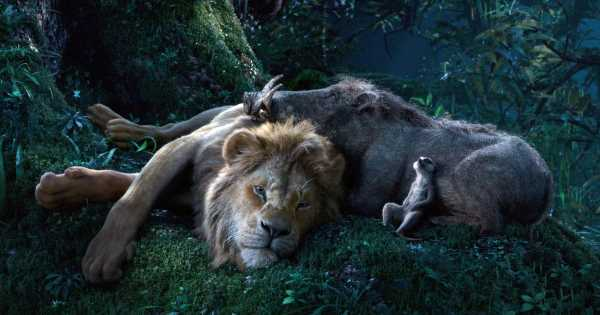 Timon and Pumbaa's Bromance Is as Hilarious as You Remember in This New Lion King Clip