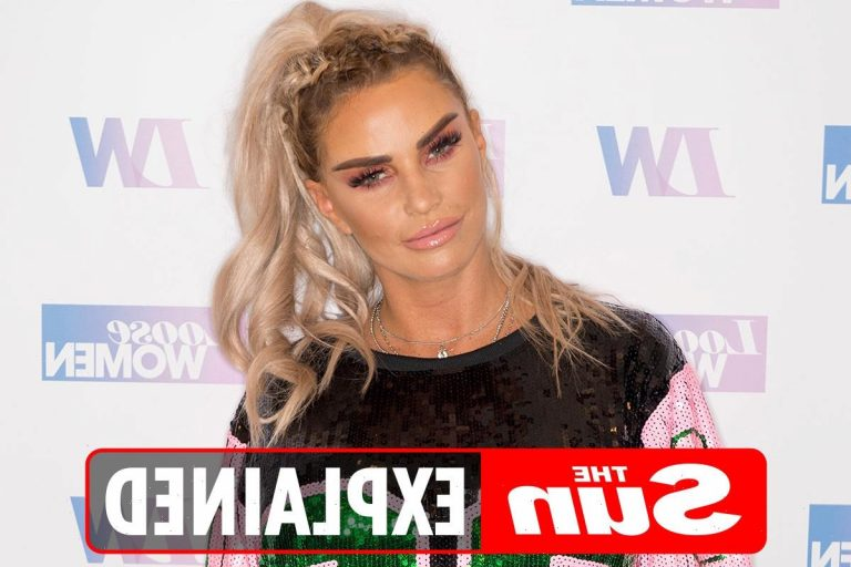 How old is Katie Price and what is her net worth? – The Sun
