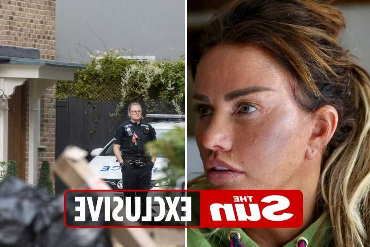 Katie Price too upset to return home and moves in with friends after alleged assault