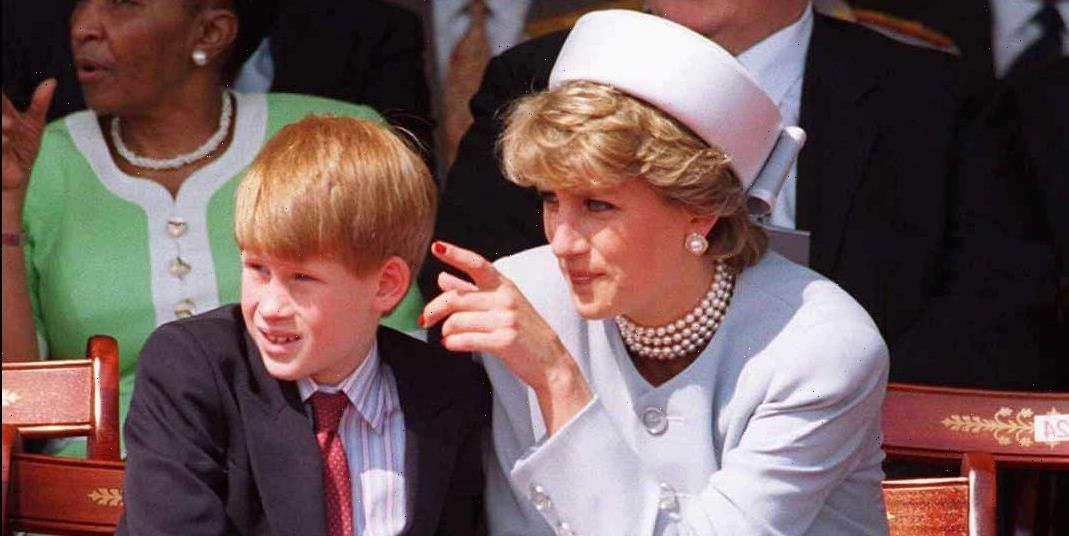 Princess Diana Would Be Firmly Team Harry When It Comes to His Memoir Controversy