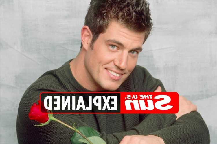Did Jesse Palmer play in the NFL?