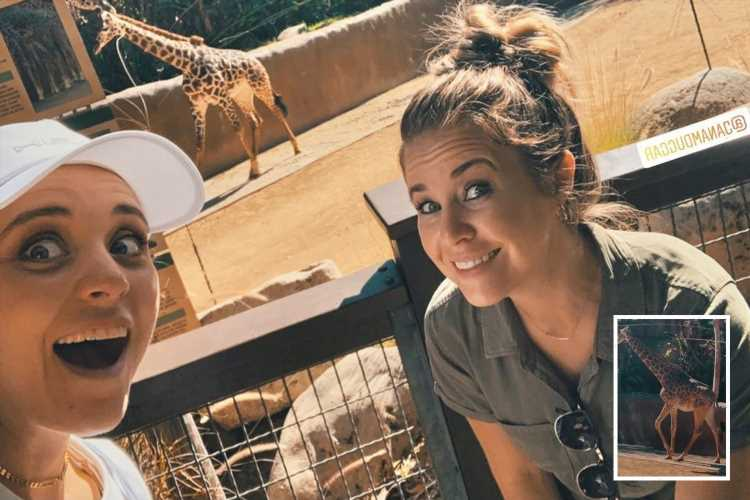 Inside Counting On's Jinger Duggar's 'amazing' zoo day as she reunites with 'rebel' sister Jana defying dress code