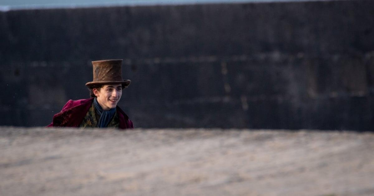 Yes, That Cheerful Wonka Singing Voice Belongs to Timothée Chalamet, Because What Can't He Do?
